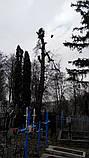 Кронирование спиливание деревьев, обрезка веток сада, фото 6