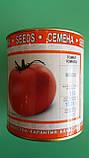 """Семена томатов """"Мобил"""" ТМ ВИТАС, 250 г (в банке), фото 2"""