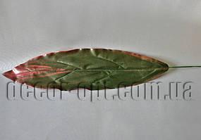 Лист Драцены зелено-бордовый  39х13 см