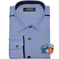 Детская рубашка с длинным рукавом арт.282А1-4 , для мальчика (р-р 29-36)
