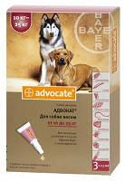 Advocate (Адвокат) Капли от блох, клещей и гельминтов для собак весом от 10 до 25 кг - 1 пипетка