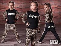Спортивный костюм Леопард АМ/-1-072