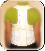 Пояс пояснично-грудного отдела