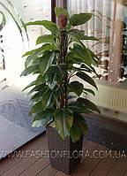 Искусственное растение Ауреум Lilia