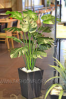 Искусственное растение Манстера