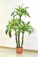 Искусственное растение Драцена Lines