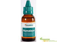 Румалая масло, Himalaya Rumalaya Liniment, 60 мл., (Gaultheria и индийский скипидар)