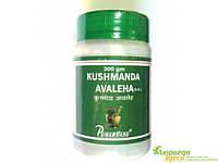 Кушманда лехья расаяна (джем), Kushmanda avaleha, пищеварительная, мочеполовая, респираторная системы