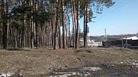 Элитные участки в лесу и возле озера 0975752716
