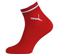 Носки мужские спортивные х/б с сеткой Смалий PUMA 16В3-323Д, 25, 27, 29 размер, красные 23, 308