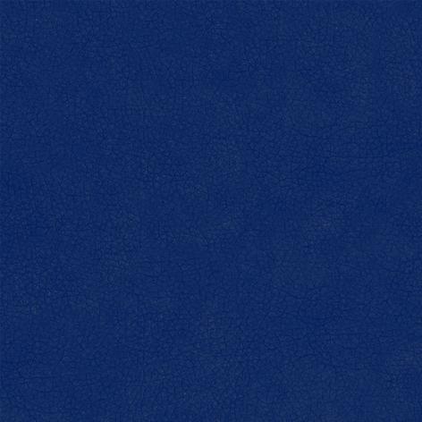 Triks Blue