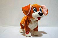Пес Бим Интерактивная игрушка, фото 1