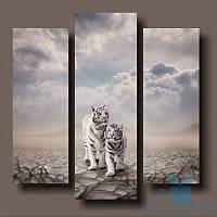 Модульная картина Белые тигры из 3 фрагментов