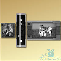 Модульная картина Триптих Зебры из 3 фрагментов, фото 1