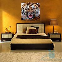 Модульная картина Тигр из 3 модулей