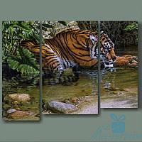 Модульная картина Тигр в реке из 3 фрагментов, фото 1