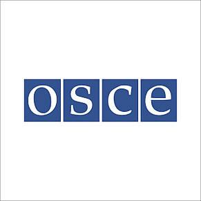 Флаг ОБСЕ (Аппликация) - (1м*1.5м), фото 2