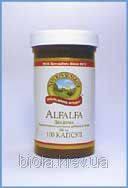 Alfalfa (Люцерна полевая)