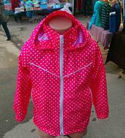 Детская демисезонная куртка в горошек