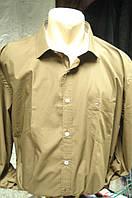 Рубашка Tommi Hilfiger  мужская батал