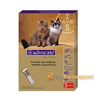 Advocate (Адвокат) капли на холку от блох и клещей для кошек от 4 до 8 кг, 1 пип. по 0,8 мл, Bayer