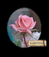 """Набор-папертоль """"Роза"""" мини"""
