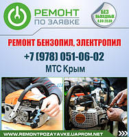 Ремонт бензопилы, электропилы Симферополь. Ремонт бензопилы в Симферополе. Мастер по ремонту бензопилы.