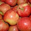 Яблоко Гала цена