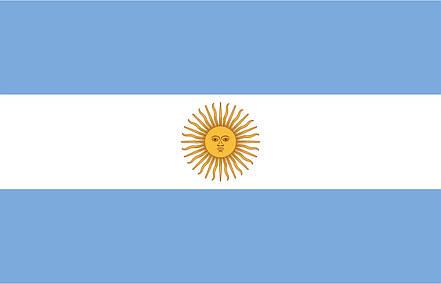 Флаг Аргентины (Аппликация) - (1м*1.5м), фото 2