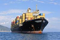 Получение необходимых разрешений на вывоз со стороны судовых или линейных агентов
