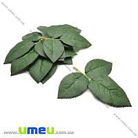 Листья яблони большие, Зеленые, 1 веточка (DIF-015481)