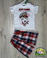 Летний костюм для мальчика 1-2 года: футболка с собакой и клетчатые шорты