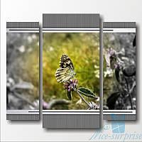 Модульная картина Бабочка из 3 фрагментов, фото 1