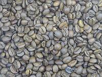 002 Кава в зернах GBBV Premium Espresso  15% Арабика / 85% Робуста 1 кг (вагова)