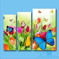 Модульная картина Бабочки из 3 фрагментов, фото 1