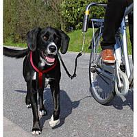 Велоспрингер для крупных собак (поводок с креплением к велосипеду)