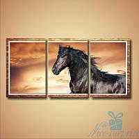 Модульная картина Вороной конь из 3 фрагментов (94х45)