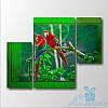 Модульная картина Два попугая из 3 фрагментов