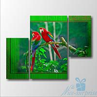 Модульная картина Два попугая из 3 фрагментов, фото 1