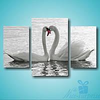 Модульная картина Триптих Лебеди из 3 фрагментов