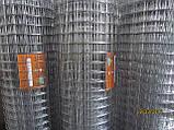 Сітка зварна ОЦИНКОВАНА 50х50х2,0, фото 5