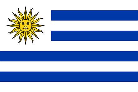 Флаг Уругвая (Аппликация) - (1м*1.5м), фото 2