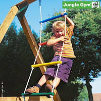 201_170. Chimp Ladder. Jungle Gym