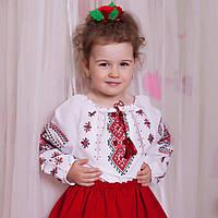 Дитяча вишиванка для дівчинки (ручна вишивка, 3-4 років), фото 1