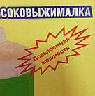 Соковыжималка Журавинка СВСП-301П (Повышенная мощность), фото 3