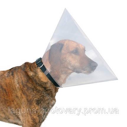 Защитный воротник (ветеринарный конус) для собак и кошек после операции 22-25/7,5см, фото 2