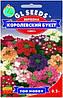 Семена цветов Вербена F1 Королевский букет смесь 0.2  г