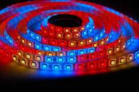 Лента светодиодная в силиконе 5050 RGB 5 метров катушка