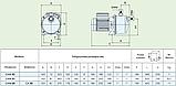 Центробежный самовсасывающий насос Speroni CAM 88–HL, фото 4