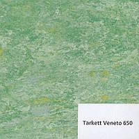 Натуральный линолеум Venetto 650